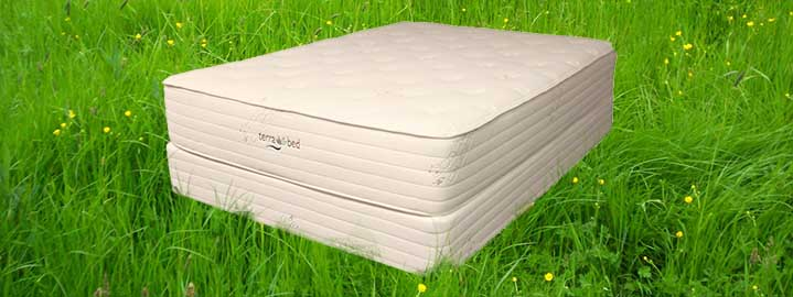 Anise Organic Mattress by Terra Bed