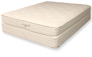 Clove | Terra Bed | Organic Mattress