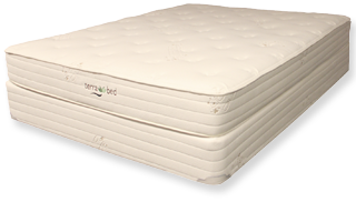 Ginger | Terra Bed | Organic Mattress